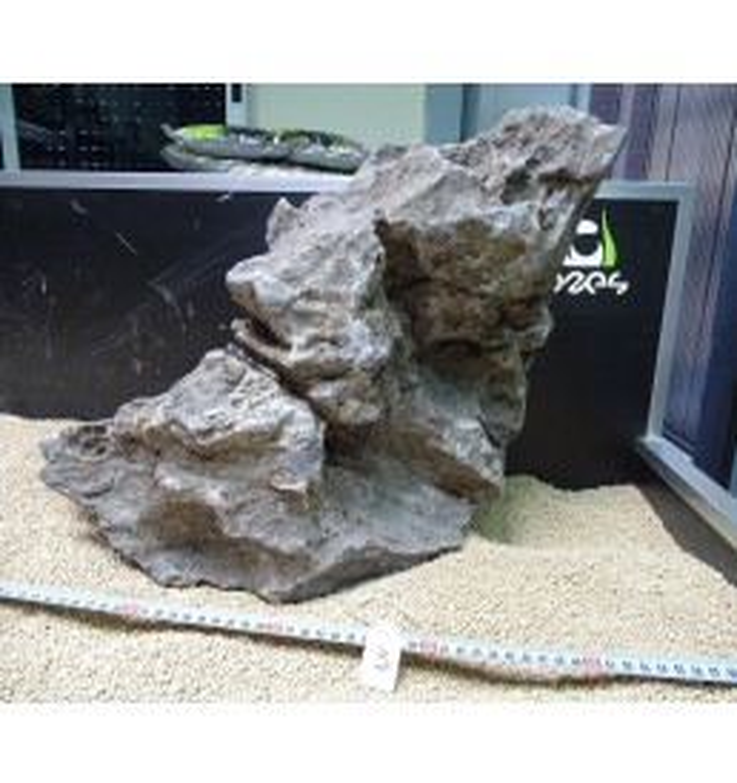 Seiryu Main Stone - Piedra Principal